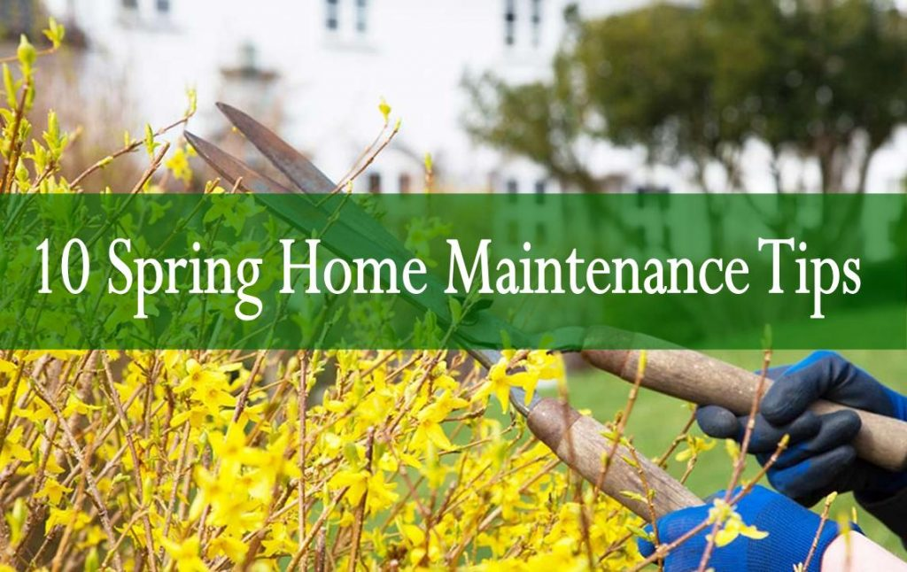 10 Spring Home Maintenance Tips