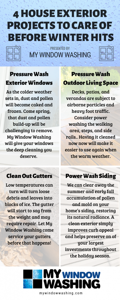 My Window Washing_Infographic_2019 (1)