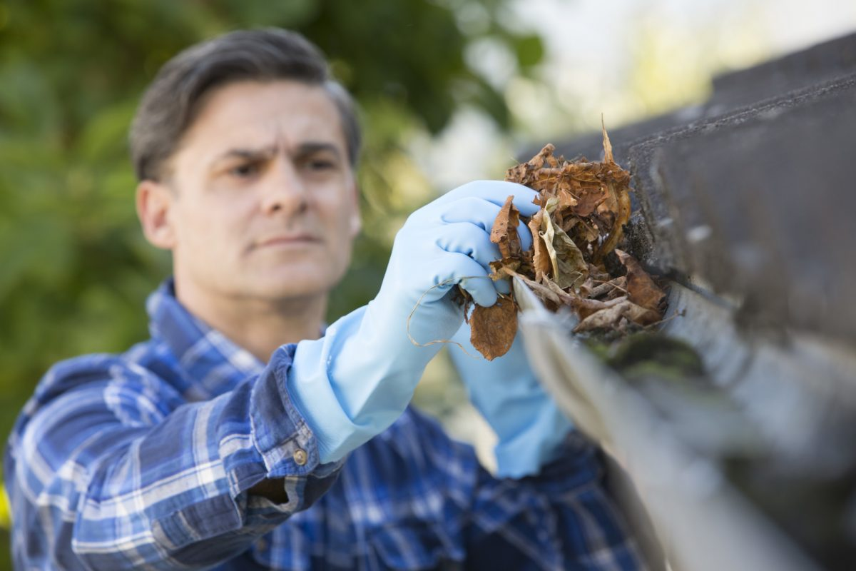 This Is How to Prevent Clogged Gutters