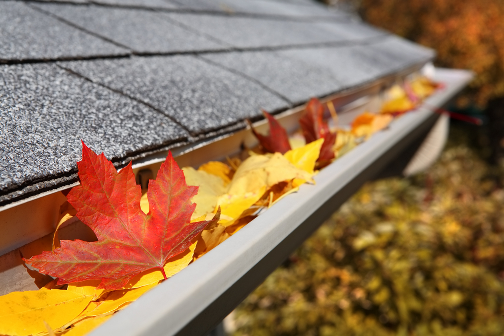 Fall Cleaning Tips: How to Clean Your Gutter Right
