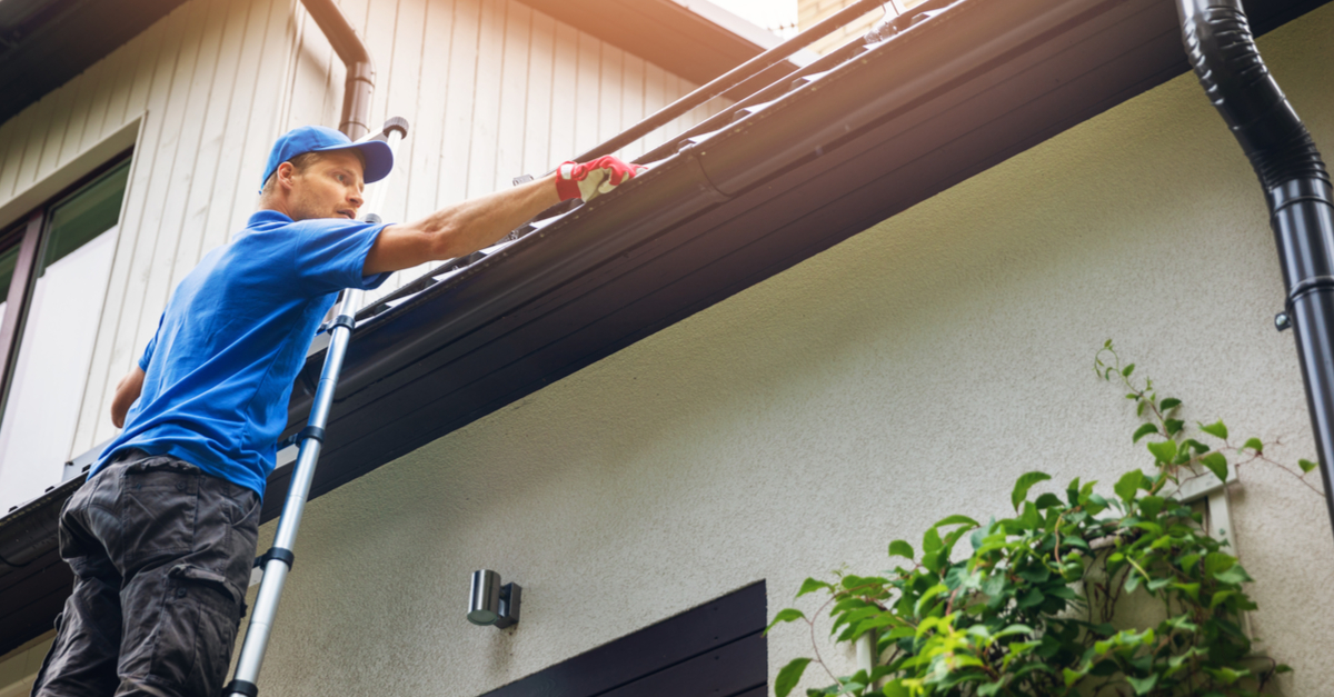 More About Our Gutter Cleaning Services